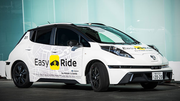 Easy Ride Robo-vehicle Mobility Service